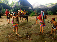 The Tsáchila traditional dance and music.