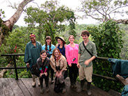 Atop an observation tower in the Amazon.