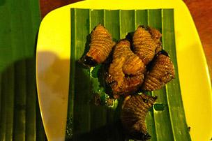 Fried larvae