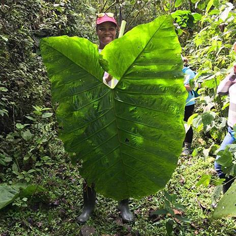 Tia Paulette holding a giant leaf in Ecuador.